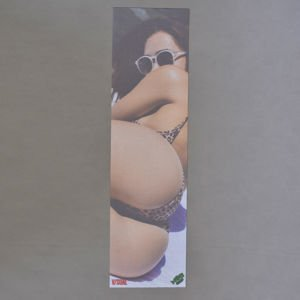 Papier Mob Grip Van Styles Girl VS1