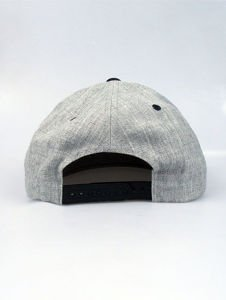 Czapka Nervous SB Sp14 Shield grey/blk